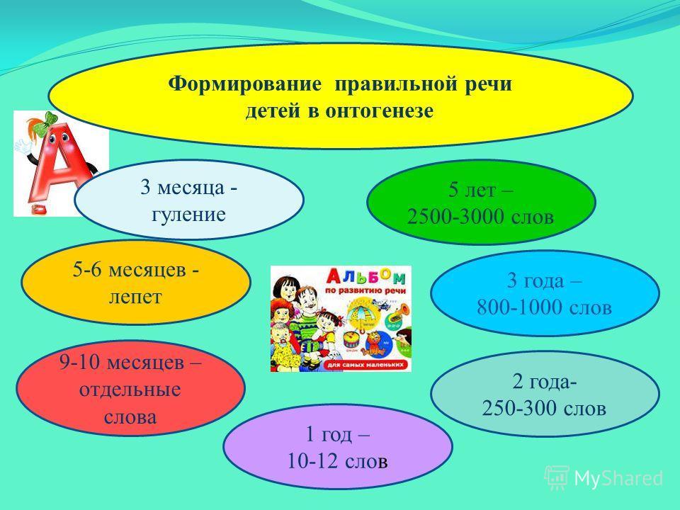 Формирование правильной речи детей в онтогенезе 5 лет – 2500-3000 слов 9-10 месяцев – отдельные слова 1 год – 10-12 слов 3 месяца - гуление 2 года- 250-300 слов 5-6 месяцев - лепет 3 года – 800-1000 слов