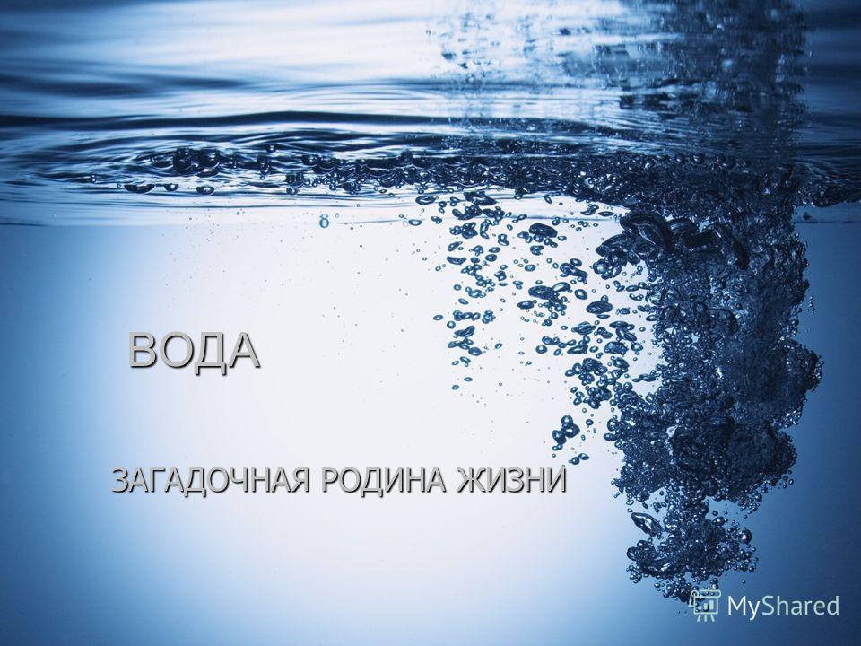 Вода – кровь планеты, обеспечивающая жизнь, это «великий скульптор», формирующий поверхность планеты, это «маховое колесо» климата и погоды, это могучий источник природного тепла и энергии. Н.Н. Михеев