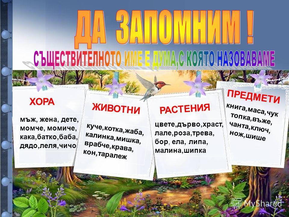 ХОРА мъж, жена, дете, момче, момиче, кака,батко,баба, дядо,леля,чичо ЖИВОТНИ куче,котка,жаба, калинка,мишка, врабче,крава, кон,таралеж РАСТЕНИЯ цвете,дърво,храст, лале,роза,трева, бор, ела, липа, малина,шипка ПРЕДМЕТИ книга,маса,чук топка,въже, чанта