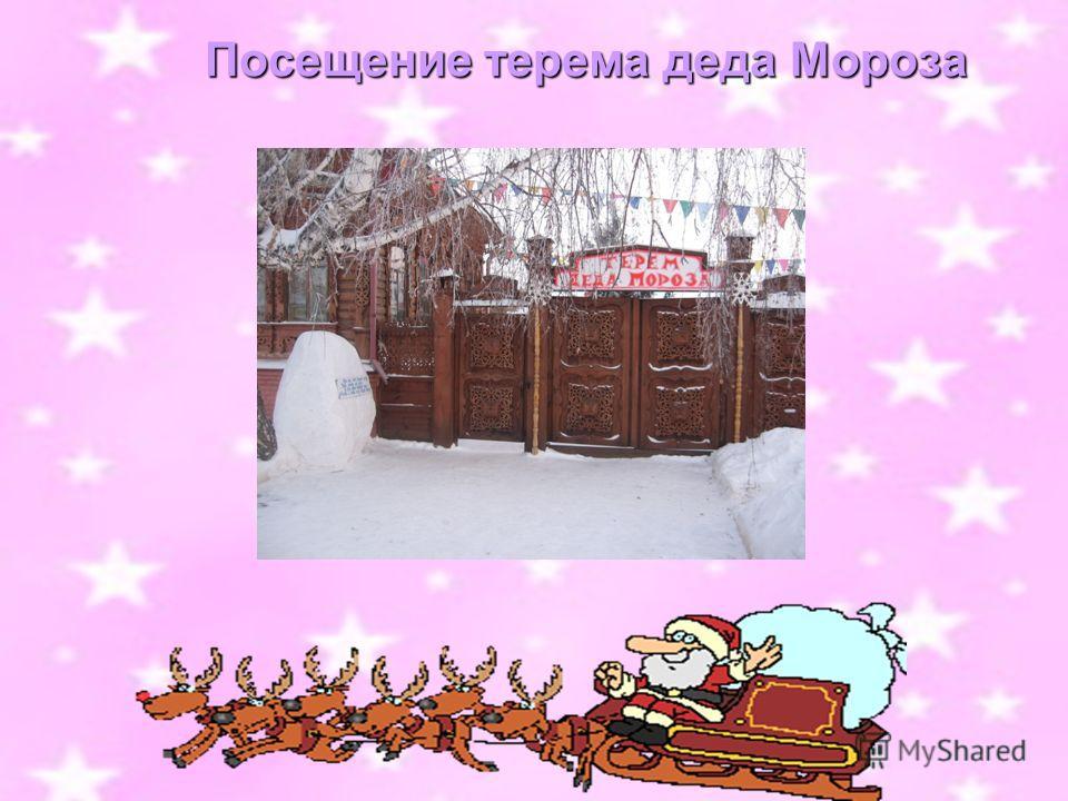 Посещение терема деда Мороза Посещение терема деда Мороза