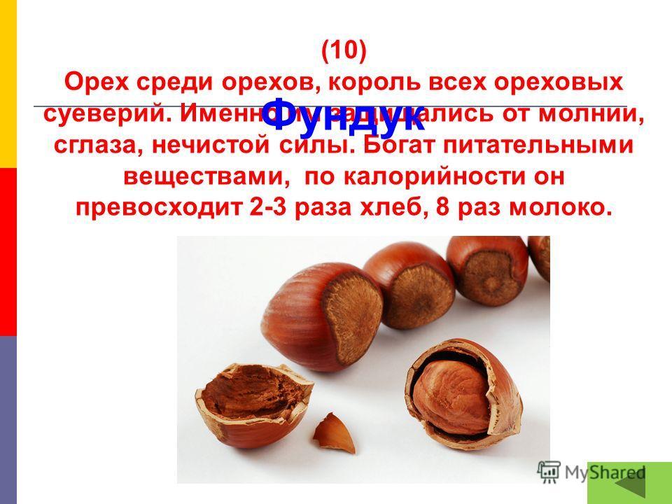(10) Орех среди орехов, король всех ореховых суеверий. Именно им защищались от молнии, сглаза, нечистой силы. Богат питательными веществами, по калорийности он превосходит 2-3 раза хлеб, 8 раз молоко. Фундук