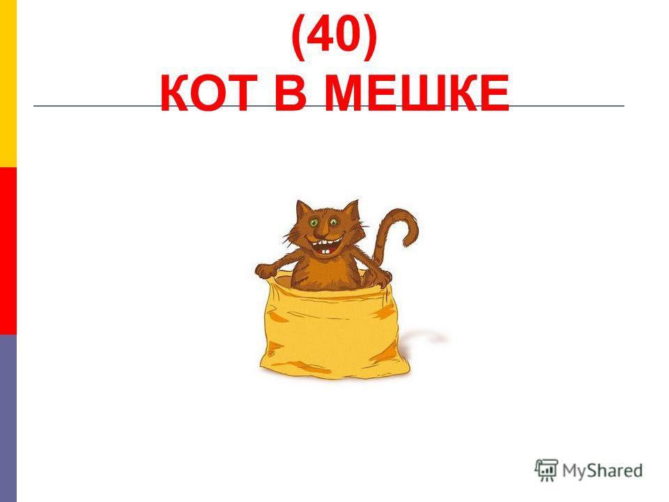 (40) КОТ В МЕШКЕ