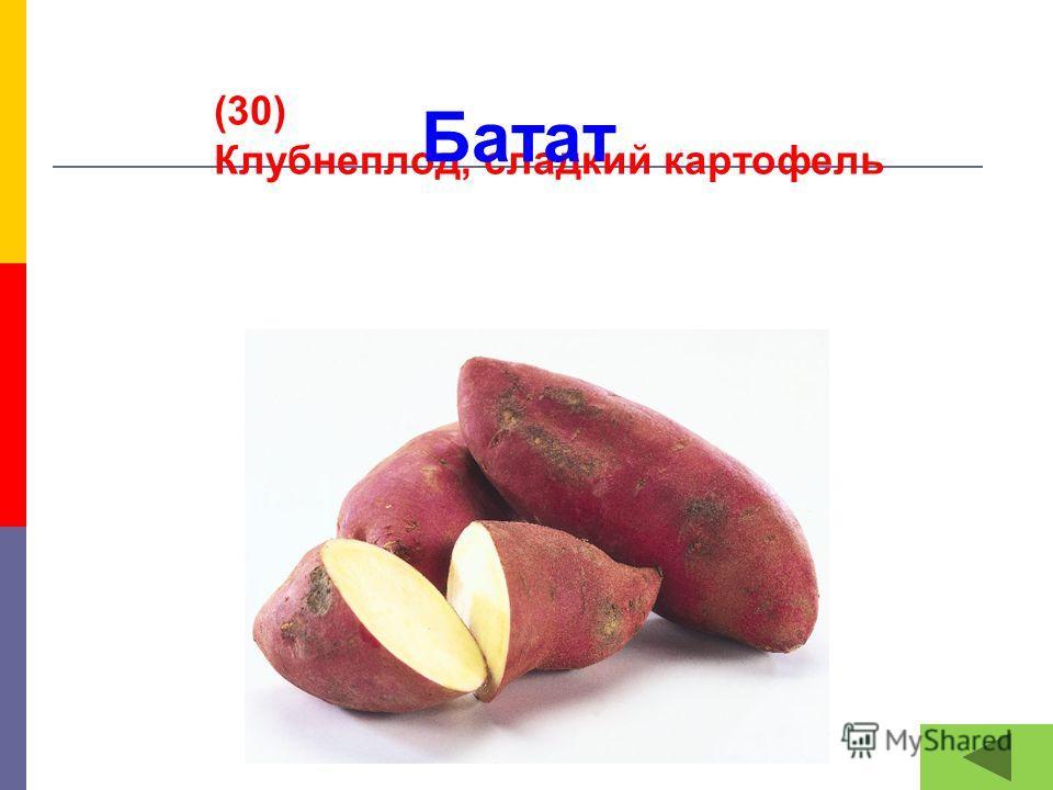 (30) Клубнеплод, сладкий картофель Батат