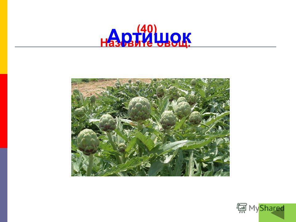 (40) Назовите овощ. Артишок