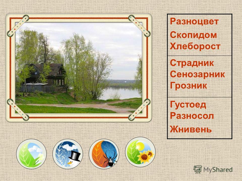 К какому времени года относятся эти русские народные названия месяцев? Зимобор Протальник Грачевник Снегогон Ручейник Первоцвет Ярець Травник Цветень