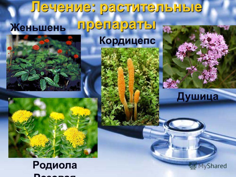 Лечение: растительные препараты Женьшень Родиола Розовая Кордицепс Душица