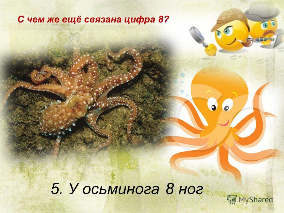 5. У осьминога 8 ног С чем же ещё связана цифра 8?