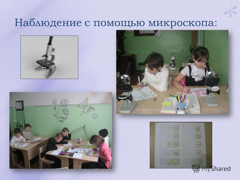 Наблюдение с помощью микроскопа: