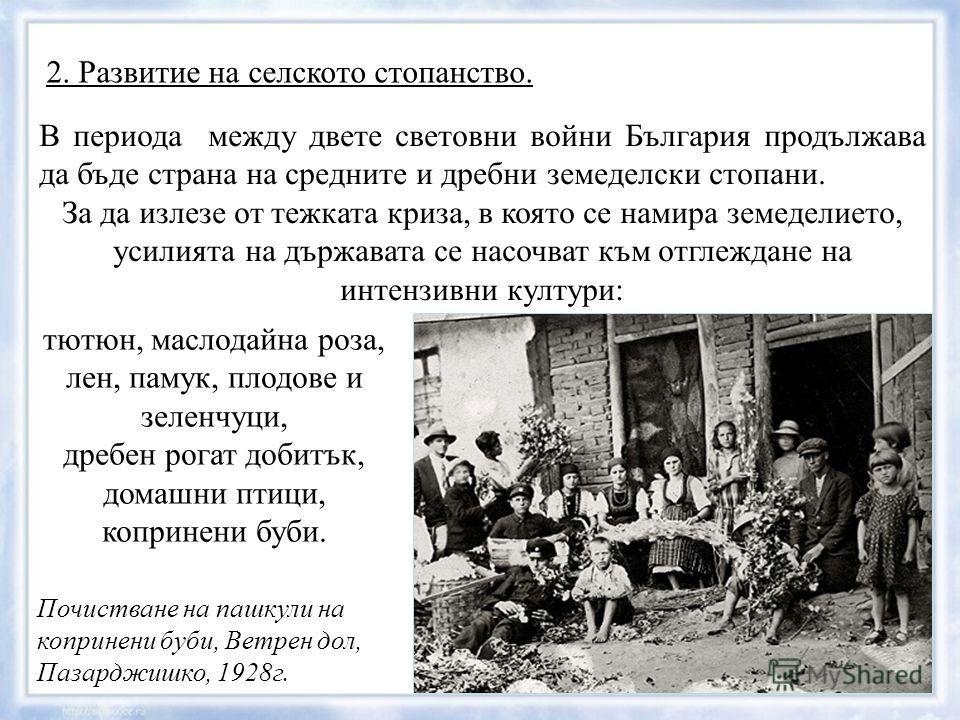 2. Развитие на селското стопанство. В периода между двете световни войни България продължава да бъде страна на средните и дребни земеделски стопани. За да излезе от тежката криза, в която се намира земеделието, усилията на държавата се насочват към о