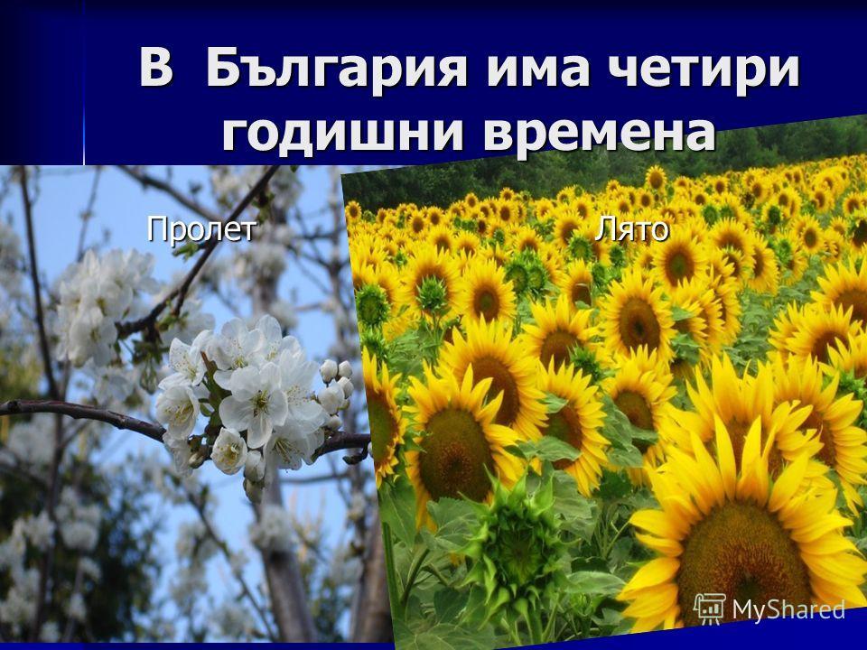 Пролет Лято Пролет Лято В България има четири годишни времена