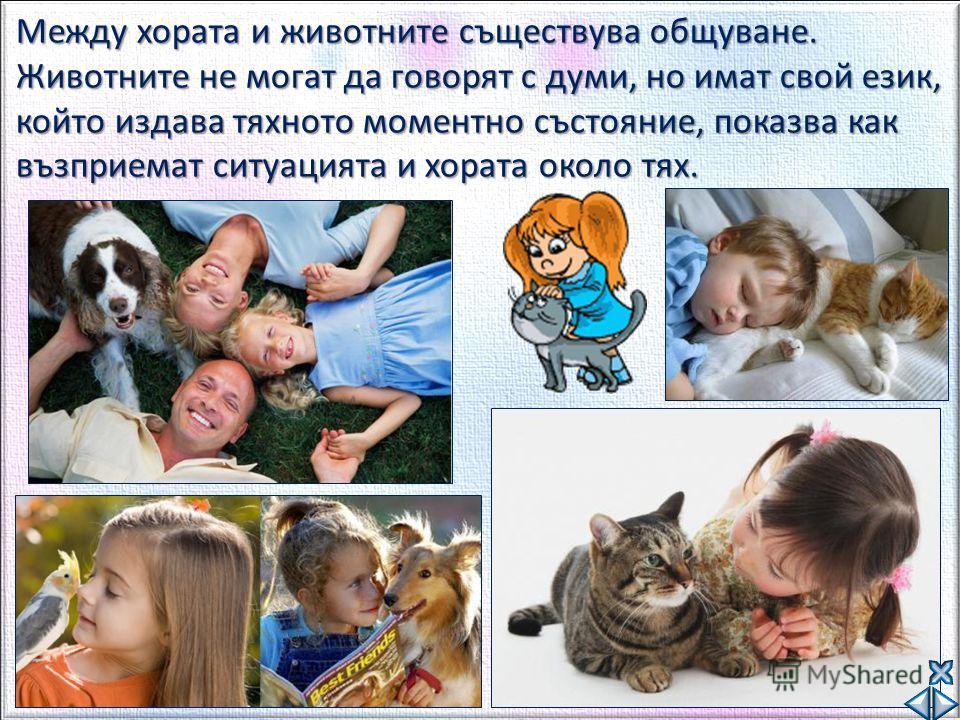 Между хората и животните съществува общуване. Животните не могат да говорят с думи, но имат свой език, който издава тяхното моментно състояние, показва как възприемат ситуацията и хората около тях.