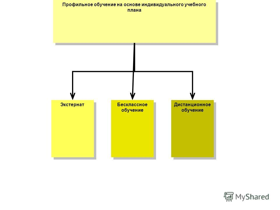 Профильное обучение на основе индивидуального учебного плана Экстернат Бесклассное обучение Дистанционное обучение