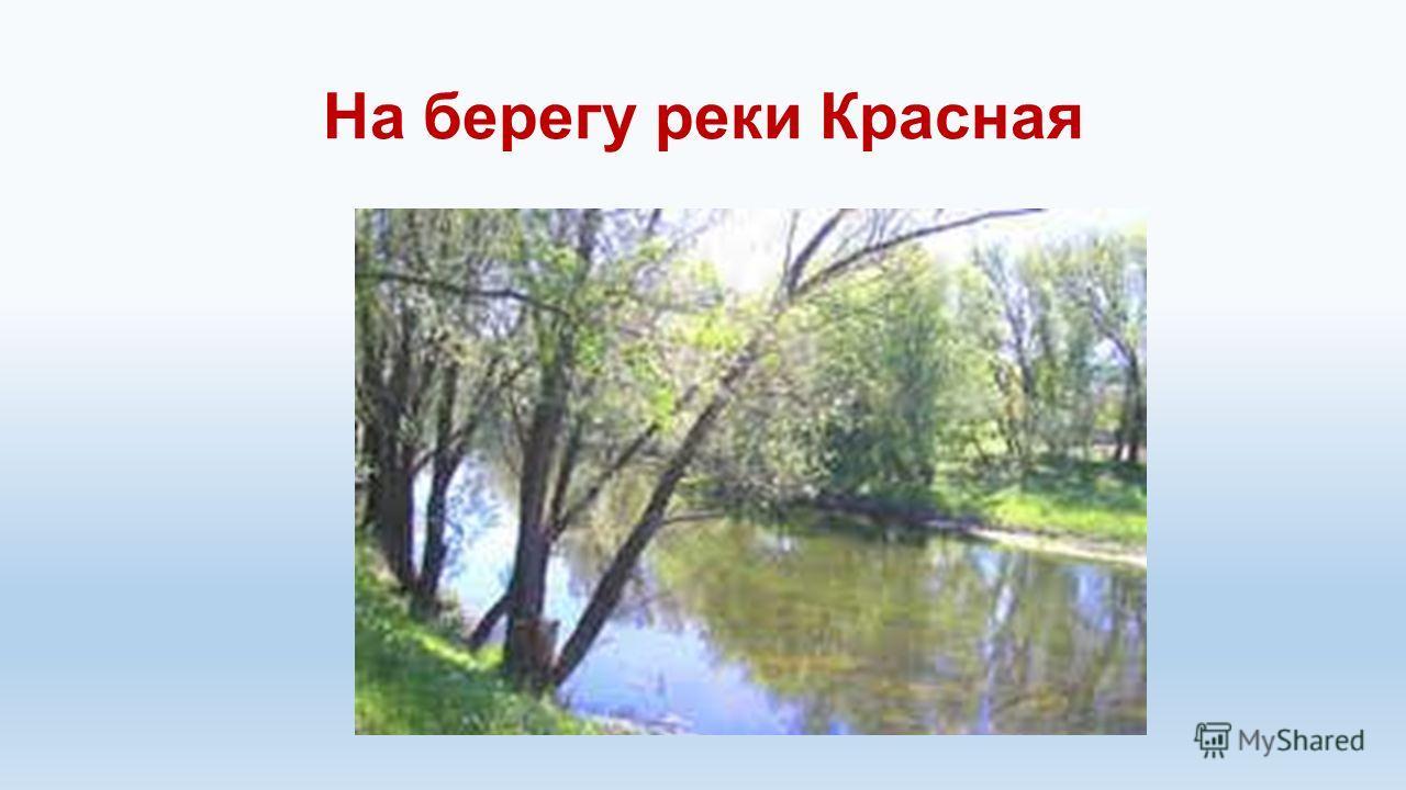 На берегу реки Красная