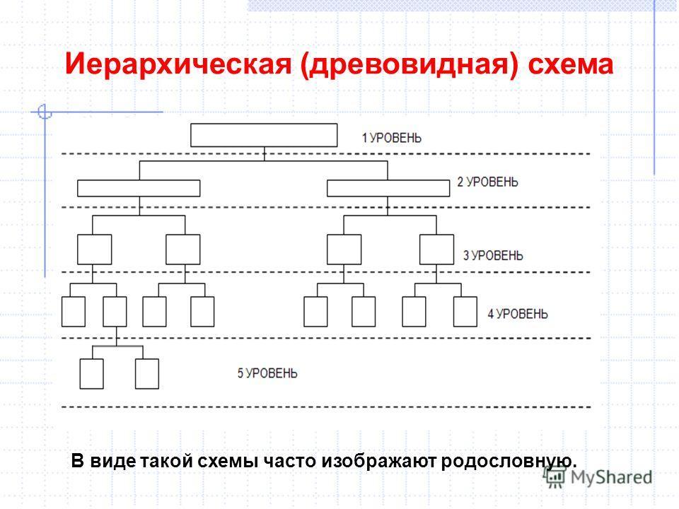 Иерархическая (древовидная) схема В виде такой схемы часто изображают родословную.