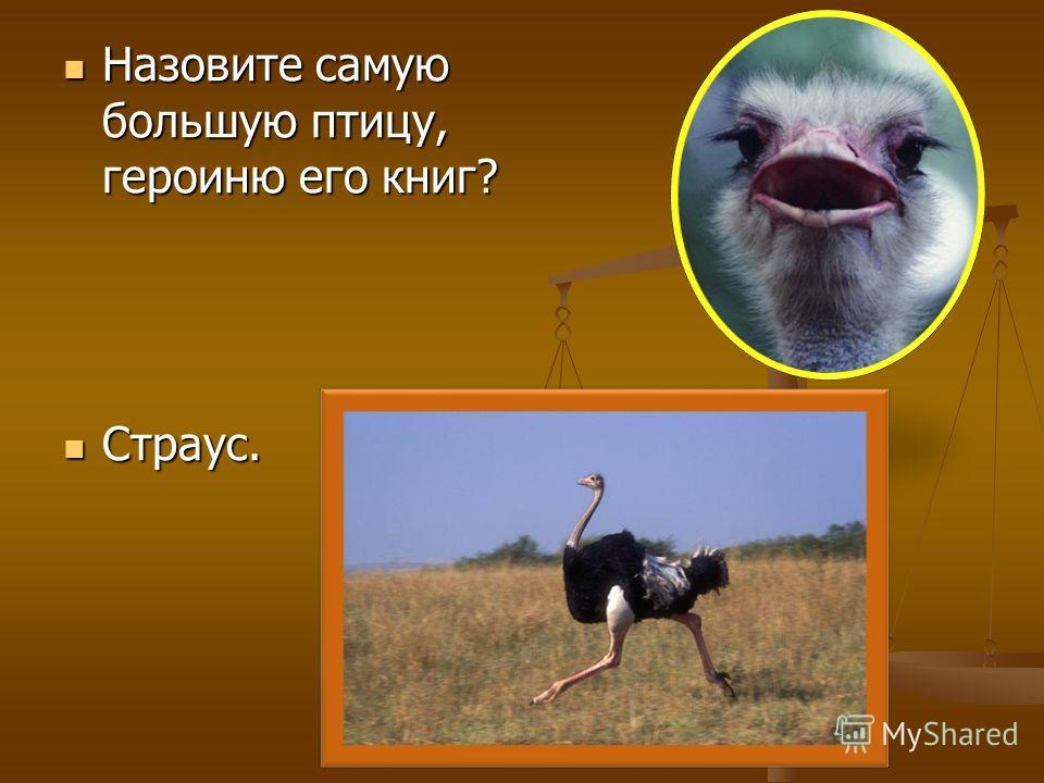 Назовите самую большую птицу, героиню его книг? Назовите самую большую птицу, героиню его книг? Страус. Страус.