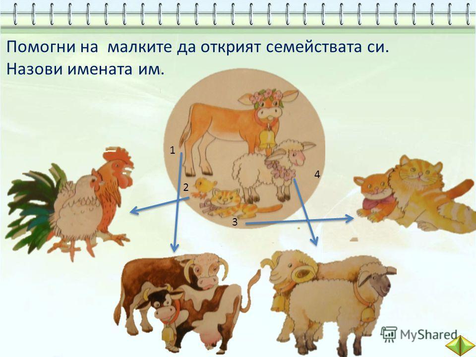 Помогни на малките да открият семействата си. Назови имената им. петел кокошка пиленце бик крава теленце котарак котка котенце овен овца агънце 1 2 3 4
