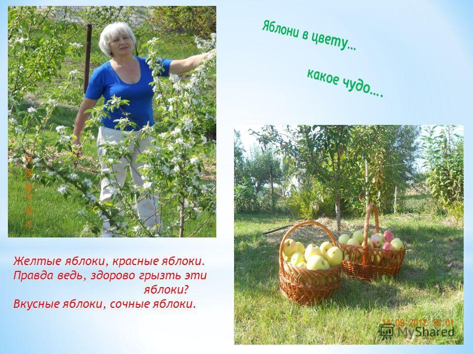 Нина Гриневa 1