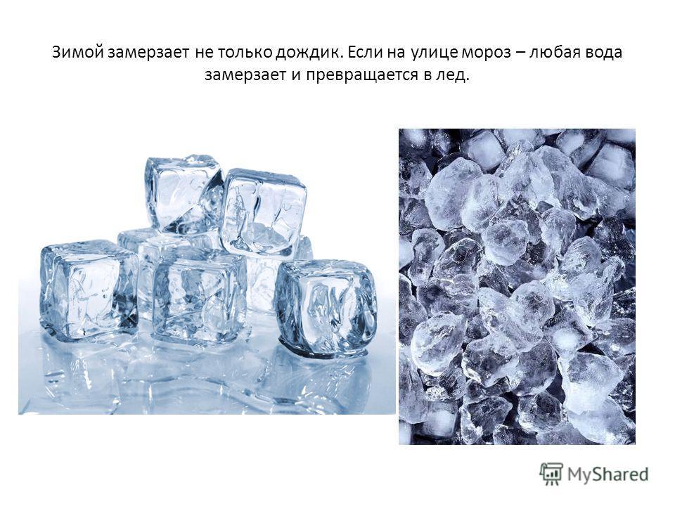 Зимой замерзает не только дождик. Если на улице мороз – любая вода замерзает и превращается в лед.