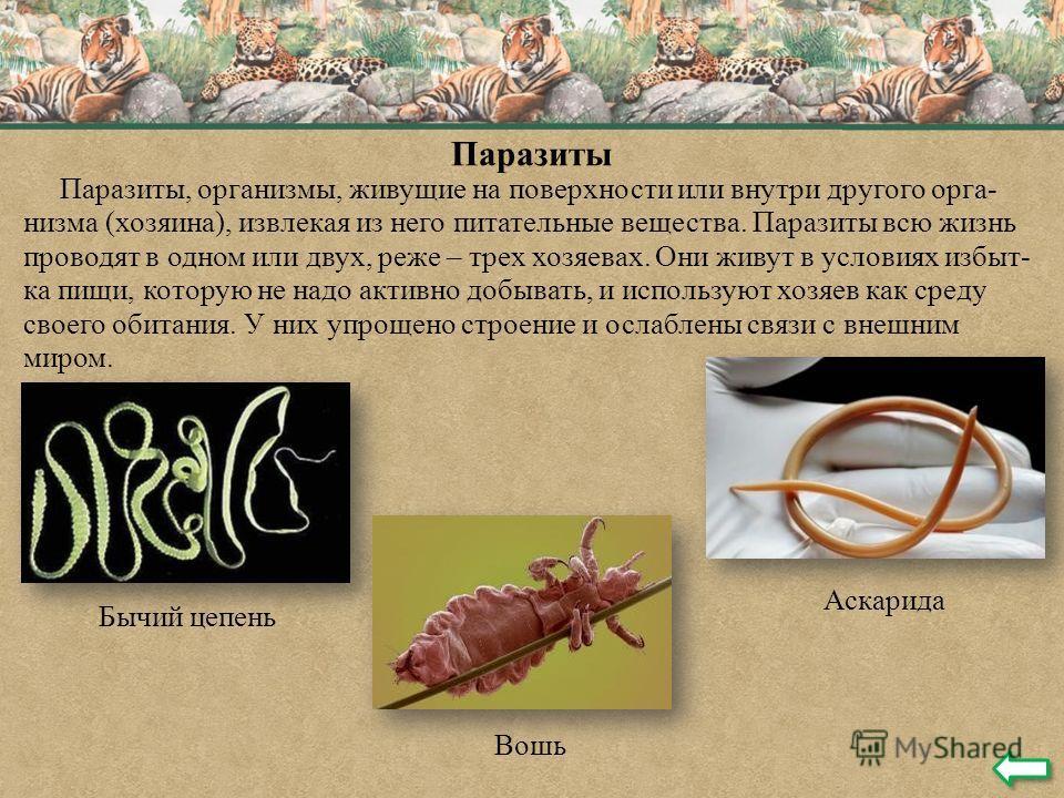 Паразиты Паразиты, организмы, живущие на поверхности или внутри другого орга- низма (хозяина), извлекая из него питательные вещества. Паразиты всю жизнь проводят в одном или двух, реже – трех хозяевах. Они живут в условиях избыт- ка пищи, которую не