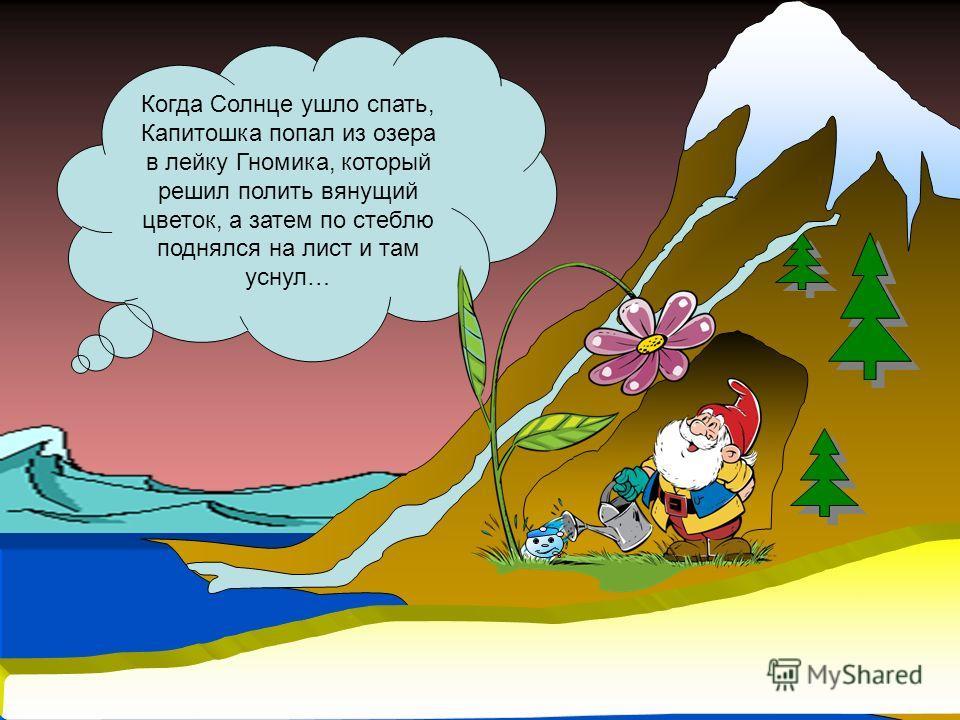 Когда Солнце ушло спать, Капитошка попал из озера в лейку Гномика, который решил полить вянущий цветок, а затем по стеблю поднялся на лист и там уснул…