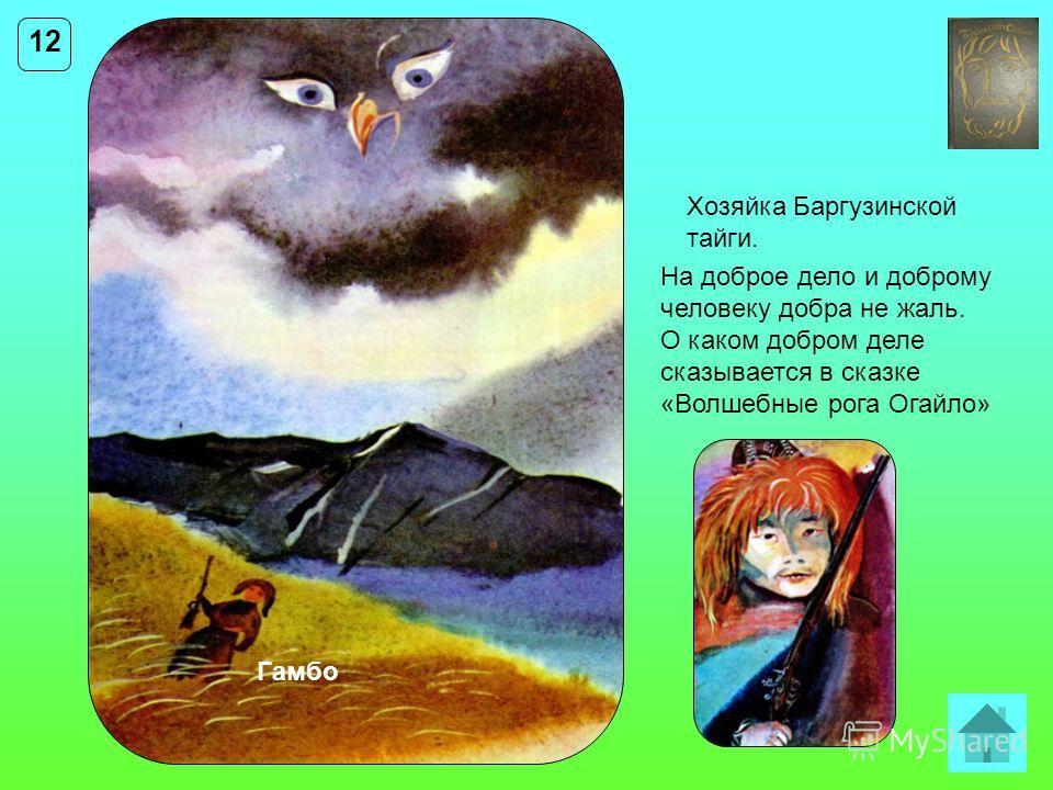 12 Хозяйка Баргузинской тайги. На доброе дело и доброму человеку добра не жаль. О каком добром деле сказывается в сказке «Волшебные рога Огайло» Гамбо