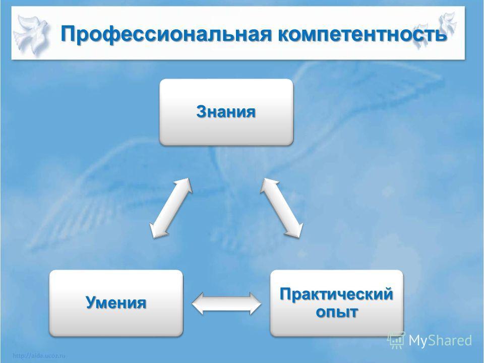 Знания Практический опыт Умения Профессиональная компетентность