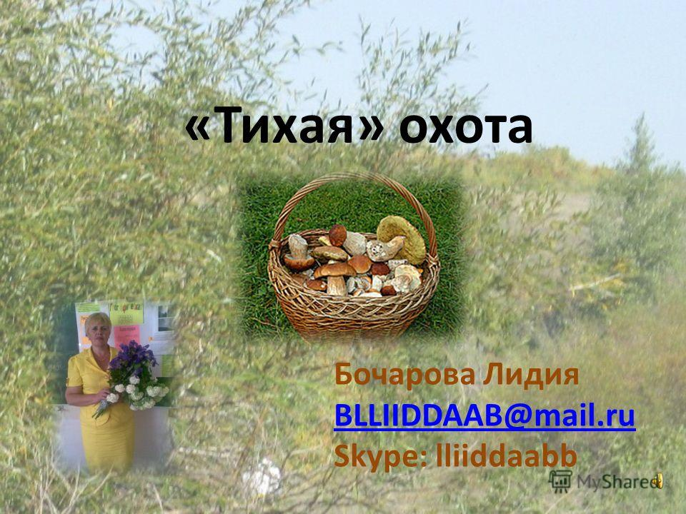 «Тихая» охота Бочарова Лидия BLLIIDDAAB@mail.ru Skype: lliiddaabb
