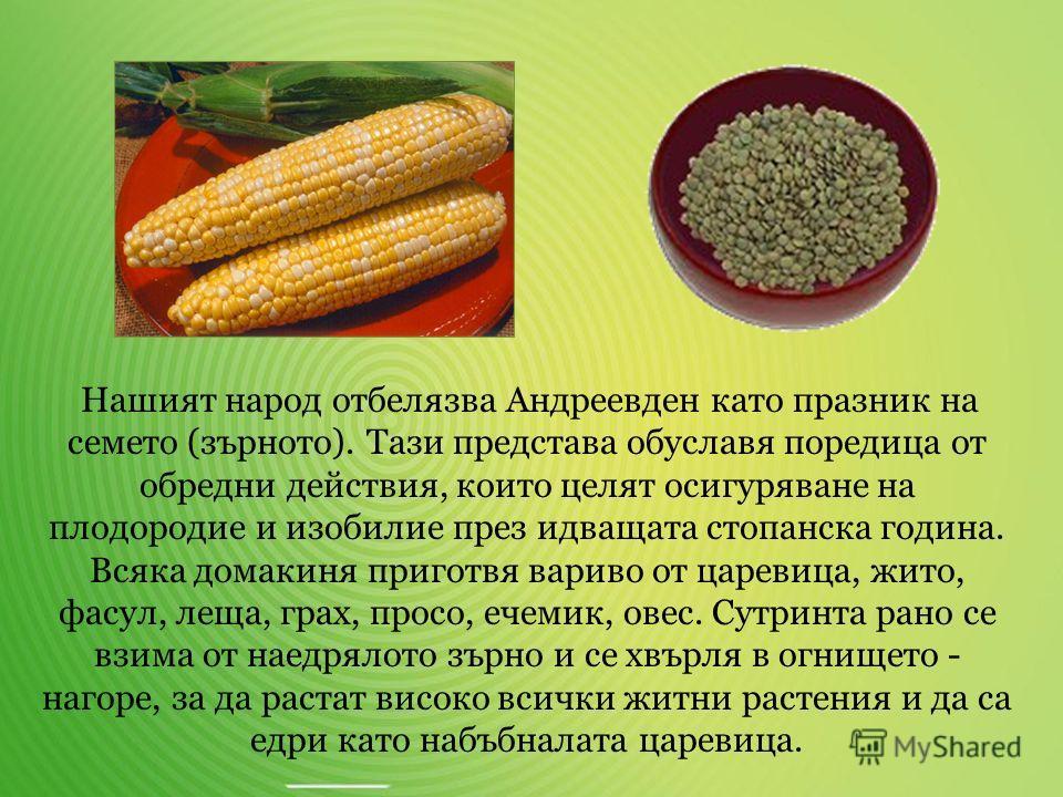 Българите наричаме празника Едрей, Едринден или Мечкин ден. Според народните възгледи и познания в областта на астрономията на този ден започва нарастването на деня. Българската поговорка гласи, че На Едрей денят започва да наедрява колкото едно прос
