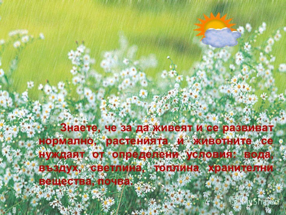 Знаете, че за да живеят и се развиват нормално, растенията и животните се нуждаят от определени условия: вода, въздух, светлина, топлина хранителни вещества, почва.