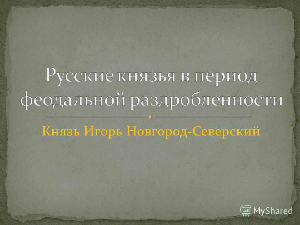 Князь Игорь Новгород-Северский