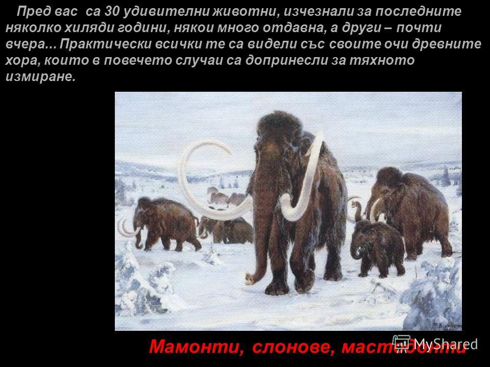 Пред вас са 30 удивителни животни, изчезнали за последните няколко хиляди години, някои много отдавна, а други – почти вчера... Практически всички те са видели със своите очи древните хора, които в повечето случаи са допринесли за тяхното измиране. М