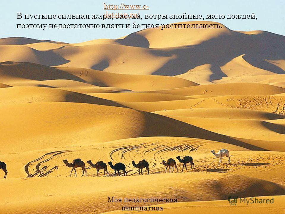 В пустыне сильная жара, засуха, ветры знойные, мало дождей, поэтому недостаточно влаги и бедная растительность. http://www.o- detstve.ru/ Моя педагогическая инициатива