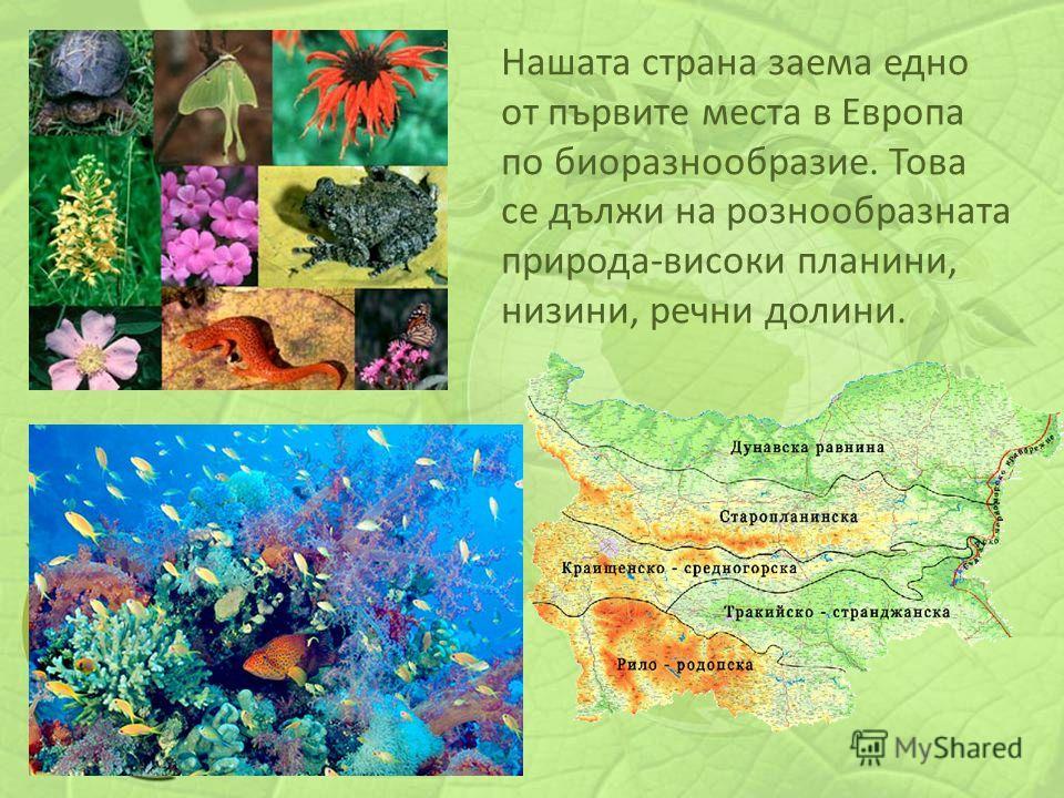 Нашата страна заема едно от първите места в Европа по биоразнообразие. Това се дължи на рознообразната природа-високи планини, низини, речни долини.