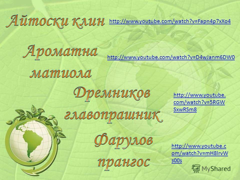 http://www.youtube.com/watch?v=Fapn4p7xXo4 http://www.youtube.com/watch?v=D4wJanm6DW0 http://www.youtube. com/watch?v=5RGW SxwRSm8 http://www.youtube.c om/watch?v=mH8lrvW s00s