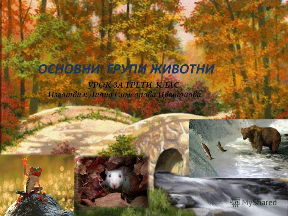 ОСНОВНИ ГРУПИ ЖИВОТНИ УРОК ЗА ТРЕТИ КЛАС Изготвил: Диана Симеонова Цветанова