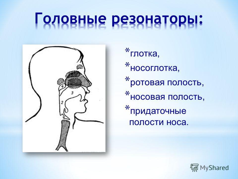 * глотка, * носоглотка, * ротовая полость, * носовая полость, * придаточные полости носа.