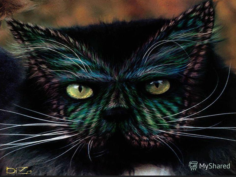 { ЖИЛ ДА БЫЛ ЧЕРНЫЙ КОТ… Всем черным котам и кошкам посвящается