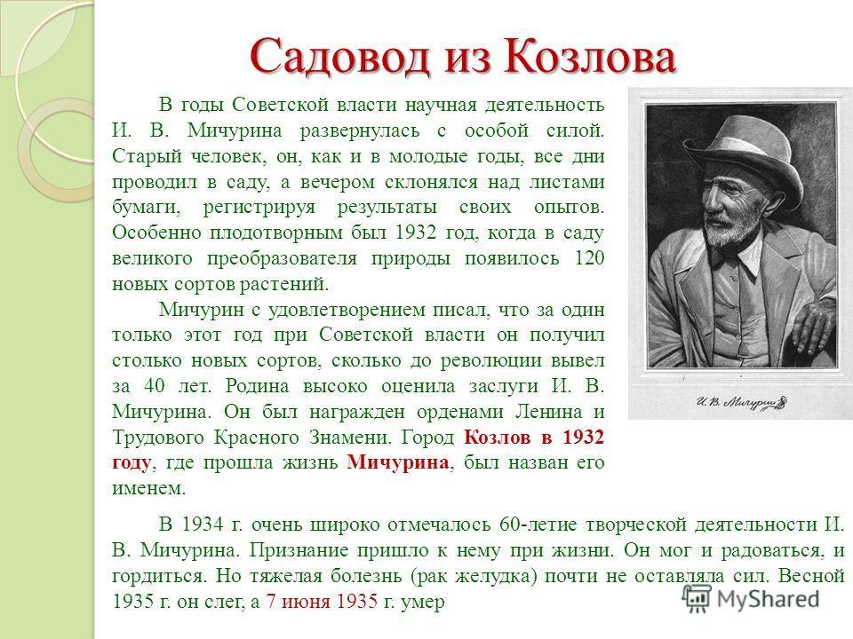 В годы Советской власти научная деятельность И. В. Мичурина развернулась с особой силой. Старый человек, он, как и в молодые годы, все дни проводил в саду, а вечером склонялся над листами бумаги, регистрируя результаты своих опытов. Особенно плодотво