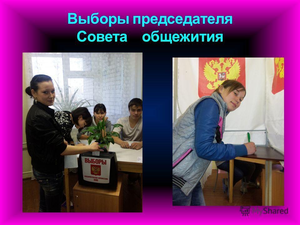 Выборы председателя Совета общежития