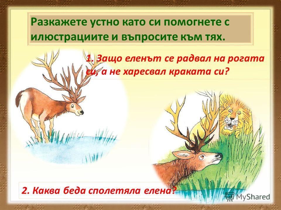 Разкажете устно като си помогнете с илюстрациите и въпросите към тях. 1. Защо еленът се радвал на рогата си, а не харесвал краката си? 2. Каква беда сполетяла елена?