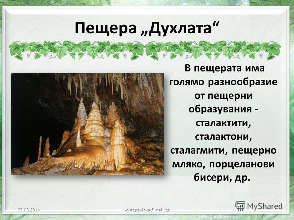Пещера Духлата В пещерата има голямо разнообразие от пещерни образувания - сталактити, сталактони, сталагмити, пещерно мляко, порцеланови бисери, др. 05.03.2014kolet.pavlova@mail.bg