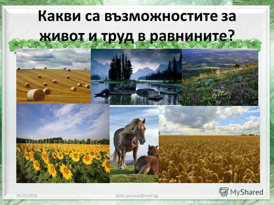 Какви са възможностите за живот и труд в равнините? 05.03.2014kolet.pavlova@mail.bg