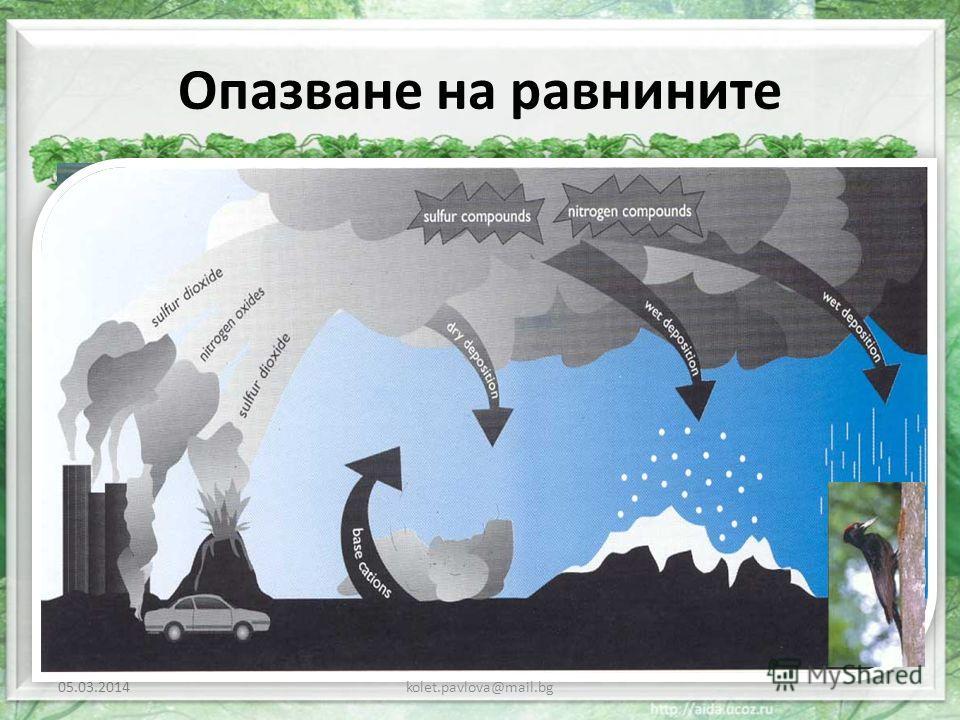 Опазване на равнините 05.03.2014kolet.pavlova@mail.bg