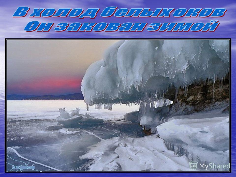 Слышишь в зареве дня Тихо шепчет Байкал, Синью нежной маня, Ветром воя у скал.