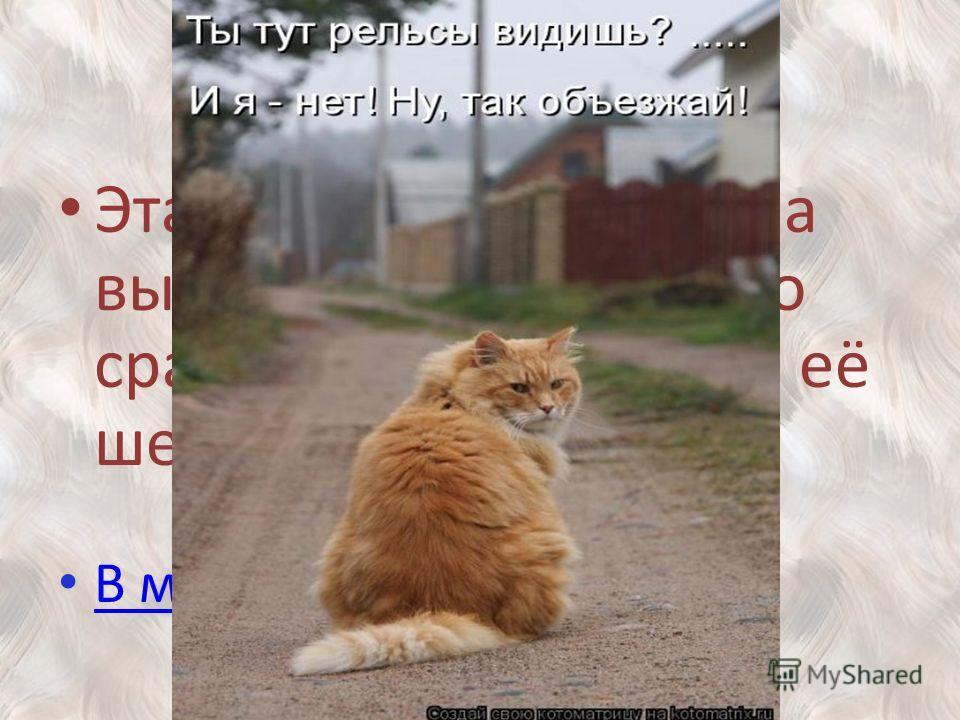400 Эта порода кошек была выведена в России, что сразу понятно по виду её шерсти. В меню