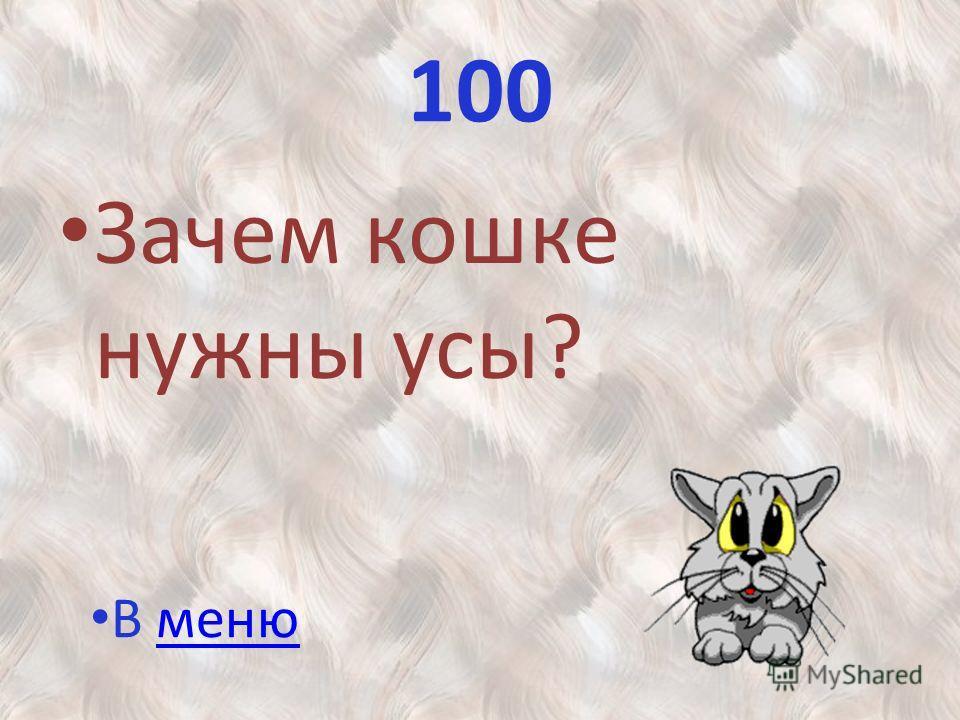 100 Зачем кошке нужны усы? В меню В меню