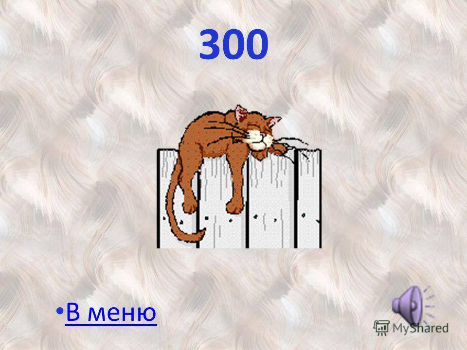 300 В меню