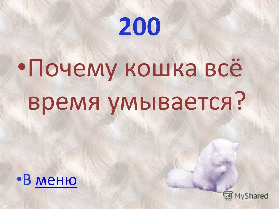 200 Почему кошка всё время умывается? В меню В меню