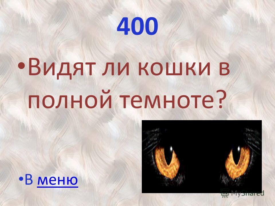 400 Видят ли кошки в полной темноте? В менюменю