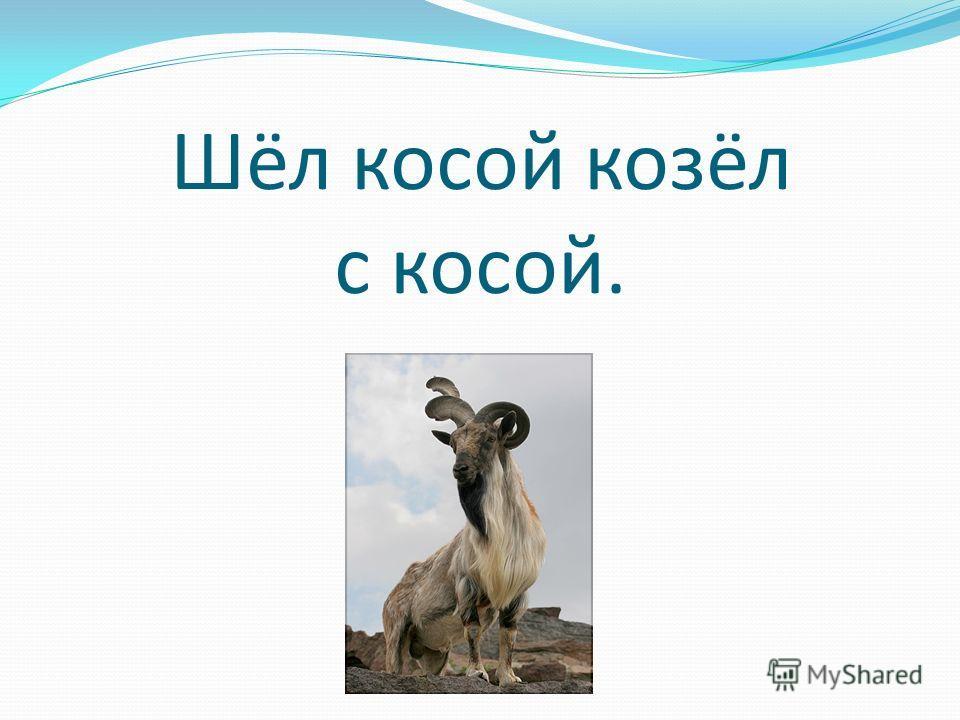 Шёл косой козёл с косой.